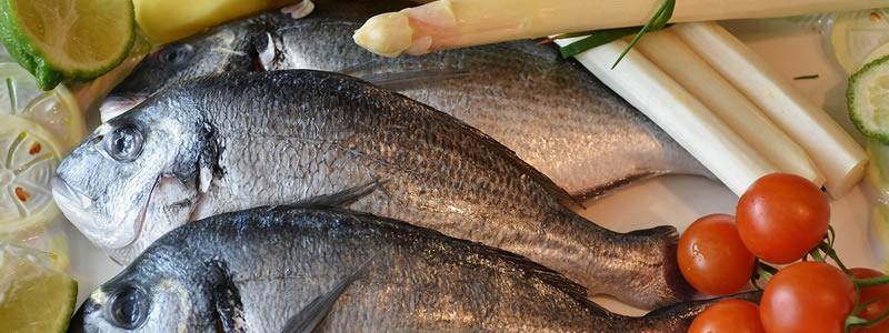 Cook and Co - Travailler et valoriser les poissons 2